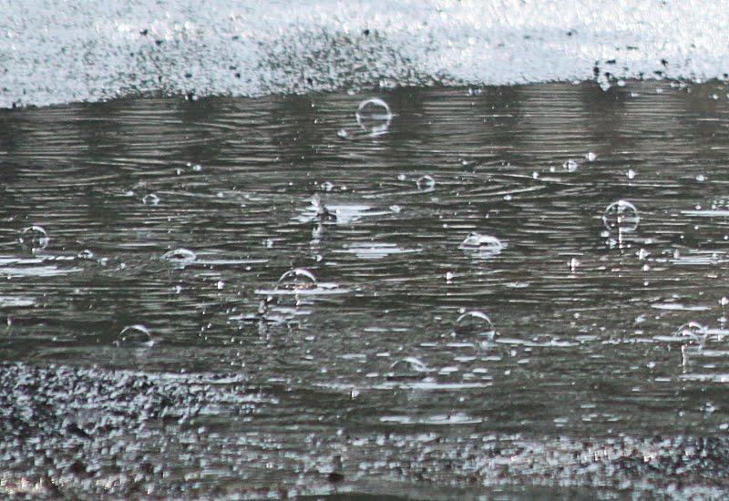 regenblase